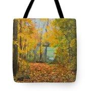 Colorful Autumn Trail Tote Bag
