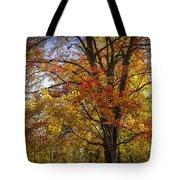 Colorful Autumn Tree In Southwest Michigan By Gun Lake Tote Bag