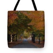 Colorful Byway Tote Bag