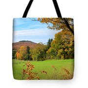 Colorful Cabot Tote Bag
