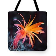 Colorful Cactus Flower Tote Bag