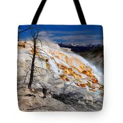 Colorful Canary Spring Tote Bag