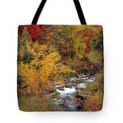 Colorful Canyon Tote Bag