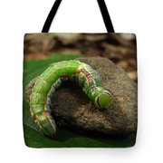 Colorful Caterpillar  Tote Bag