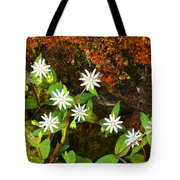 Colorful Chickweed Tote Bag