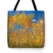 Colorful Colorado Autumn Landscape Tote Bag