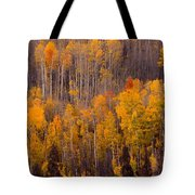 Colorful Colorado Autumn Landscape Vertical Image Tote Bag