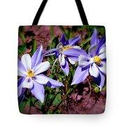 Colorful Columbine Tote Bag
