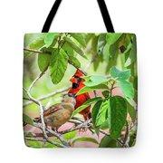Colorful Couple Tote Bag