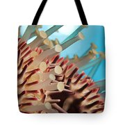 Colorful Crown Of Thorns Starfish Tote Bag
