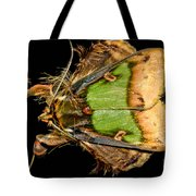 Colorful Cryptic Moth Tote Bag