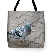 Colorful Dove Tote Bag