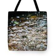 Colorful Fountain Tote Bag