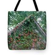 Colorful Gable Tote Bag