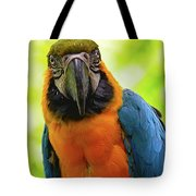 Colorful Gaze Tote Bag