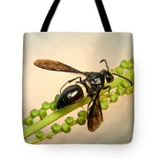 Colorful Hymenop 1 Tote Bag