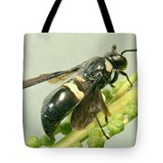 Colorful Hymenop 3 Tote Bag