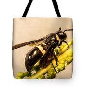 Colorful Hymenop 5 Tote Bag