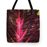 Colorful Leaf By Mother Nature Tote Bag