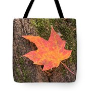 Colorful Leaf Tote Bag