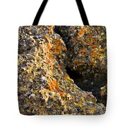 Colorful Lichens Tote Bag