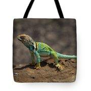 Colorful Lizard Tote Bag
