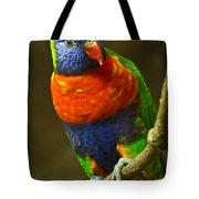 Colorful Lorikeet Tote Bag