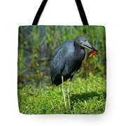 Colorful Lunch Tote Bag