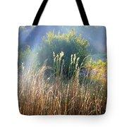 Colorful Morning Marsh Tote Bag