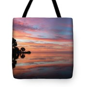 Colorful Morning Mirror - Spectacular Sky Reflections At Dawn Tote Bag