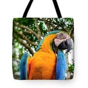 Colorful Nature Tote Bag