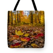 Colorful Path Tote Bag
