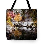 Colorful Pond Tote Bag