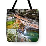 Colorful Pool In The Gorge Of Watkins Glen Tote Bag