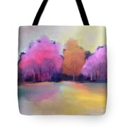 Colorful Reflection Tote Bag by Michelle Abrams
