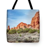 Colorful Rock Formations In Kodachrome Basin State Park, Utah Tote Bag