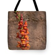 Colorful Snapdragons Tote Bag