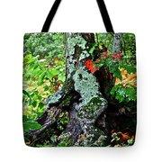 Colorful Stump Tote Bag