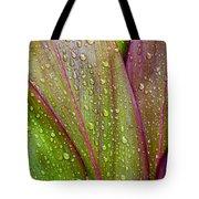 Colorful Ti Leaves Tote Bag