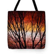 Colorful Tree Branches Tote Bag