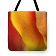 Colorful Tulip Closeup Abstract Tote Bag