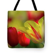 Colorful Tulips Tote Bag