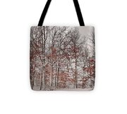 Colorful Winters Day Tote Bag