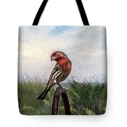 Colors Are Deceiving  Tote Bag