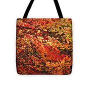 Colors Blowing In The Wind Tote Bag by Lori Frisch