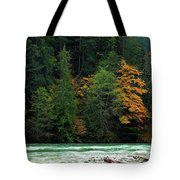 Colors In Nature Tote Bag