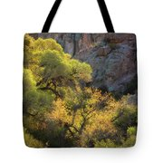 Colors Of Autumn In The Sonoran  Tote Bag
