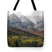 Colors Of Autumn On Mcclure Pass Tote Bag