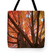 Colors Of Fall Tote Bag