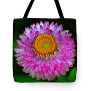 Colors Of Nature - Grand Opening 001 Tote Bag